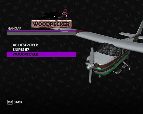 SR3 Woodpecker.jpg